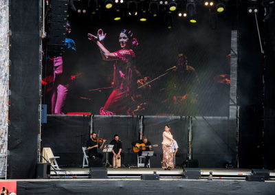 Hispaania- ja Ladina-Ameerika muusika kontsertetendus